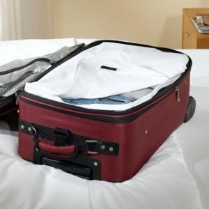 bed bug suit case liner