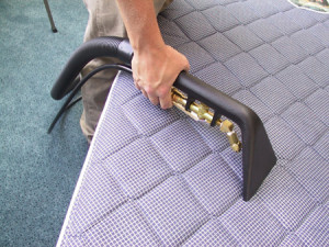 mattress and carpet cleaning