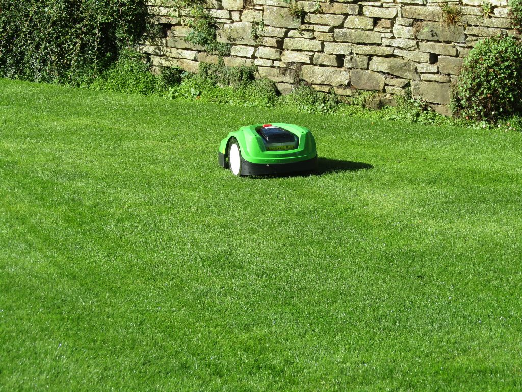 keep pests off lawn