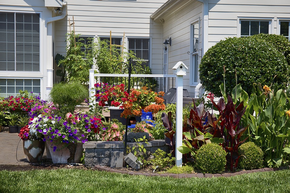 safety in your backyard